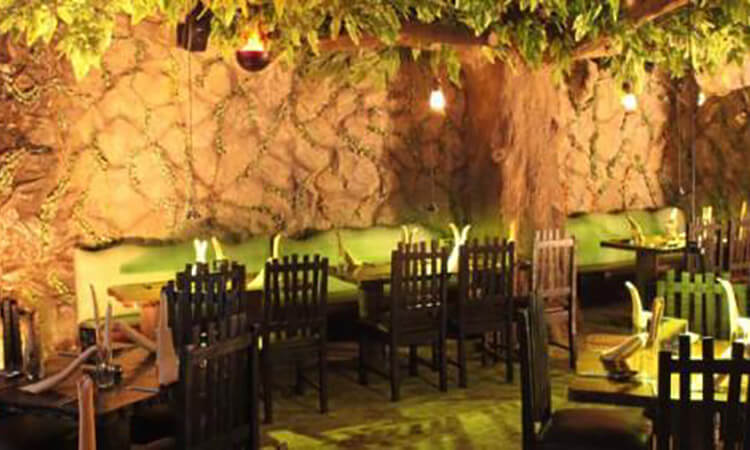 Rainforest Resto - Bar